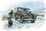 January. Bronze green Series III 88in truck cab above Long Preston in the Yorkshire Dales.